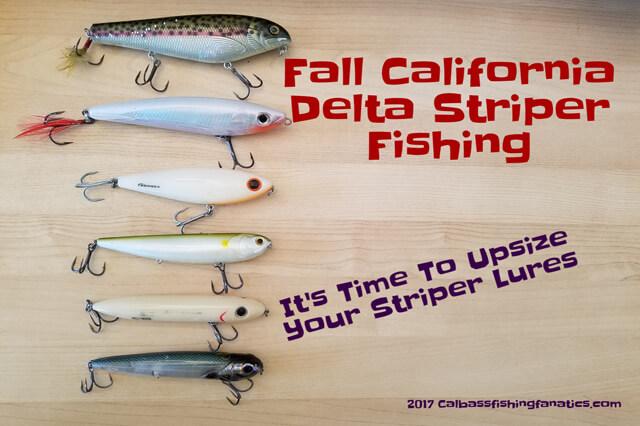 Fall california delta striper fishing calbassfishingfanatics for Fall bass fishing lures