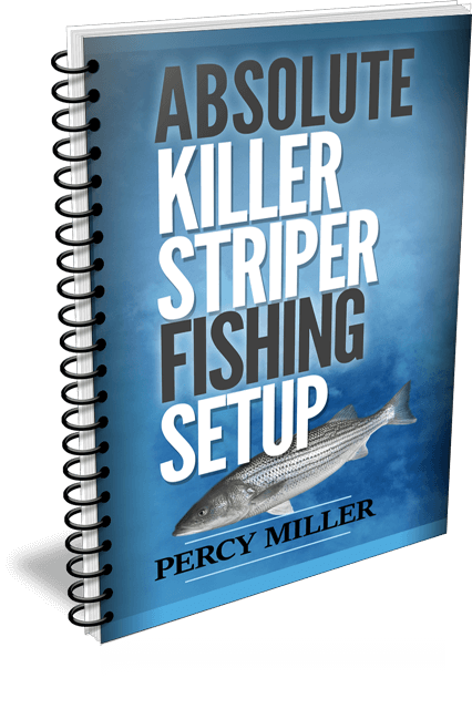 Absolute Killer Striper Fishing Setup